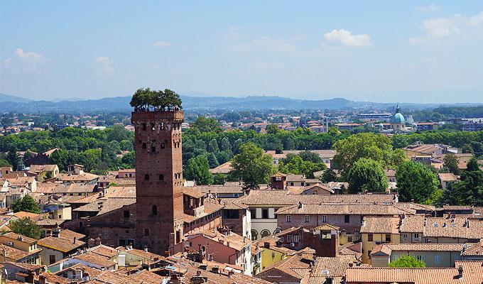 Lucca Toskana - Turm mit Baum Torre Guinigi